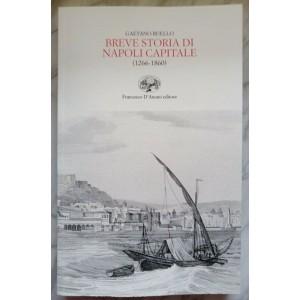 Gaetano Ruello, Breve storia di Napoli capitale 1266-1860